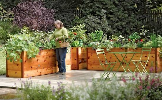 Высокие грядки значительно упростят уход за растениями. Делая высокие грядки следует учитывать рост растений, чем больше рост, тем ниже нужно делать грядку.