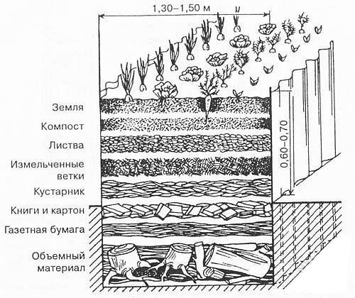 Схема расположения слоев для устройства теплой грядки. Толщина слоев может быть произвольной, но обычно слои делают толщиной 20 см.