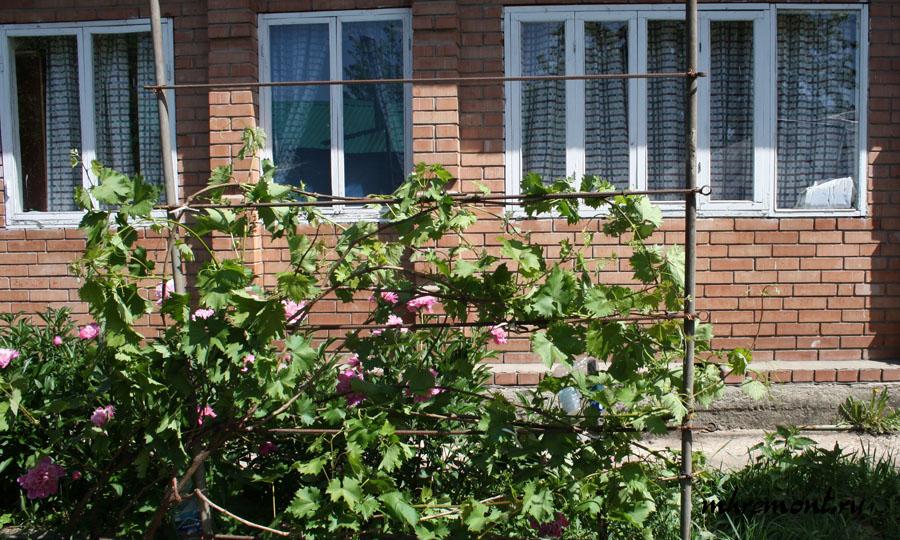 Для винограда опора своими руками из арматуры 41