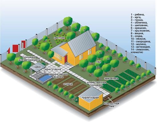 Нормы расположения. Туалет необходимо располагать в дали от других построек и источников воды.